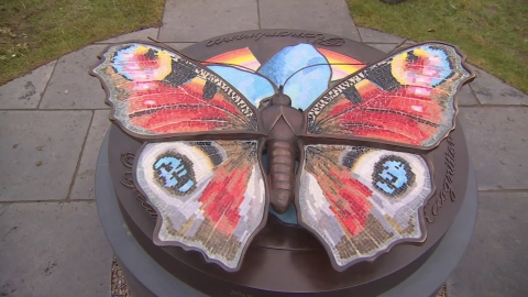 Organ donor memorial unveiled in Staffordshire