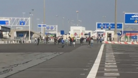 Calais migrants caught on video rushing to board a ferry