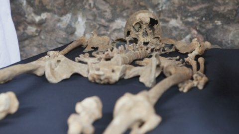 Skeletons were Black Death victims